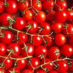 помидоры рапунцель описание сорта