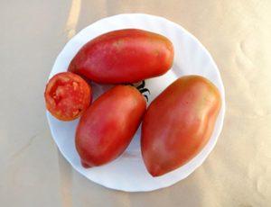 Томат Розовый Фламинго полосатый: описание и характеристика сорта, фото помидоров, отзывы об урожайности куста