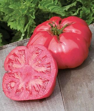 Сорт томатов Розовый Мед характеристика и описание