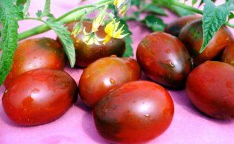 томат де барао характеристика и описание сорта
