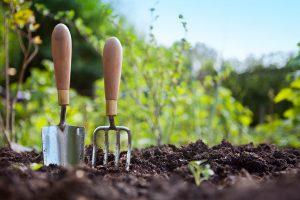 Чем и как обработать теплицу после сбора урожая