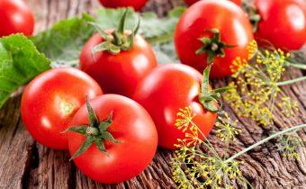 жароустойчивые томаты для юга России