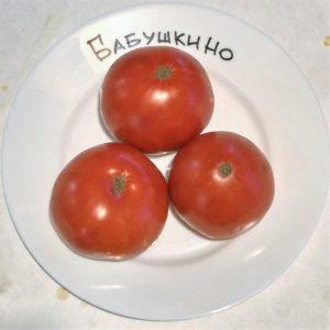 Томат Бабушкин подарок характеристика и описание сорта урожайность с фото