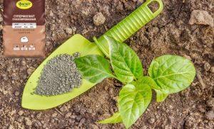 Фосфорное удобрение