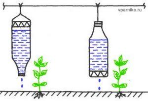 Капельный полив из пластиковых бутылок своими руками для огурцов и помидоров