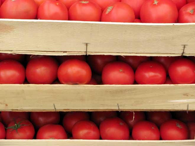 томаты в ящиках