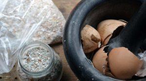 приготовление настоя из яичной скорлупы