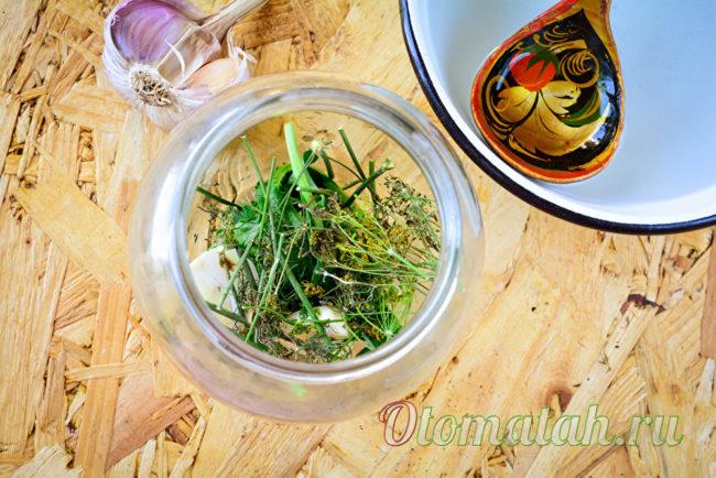 пряные травы для заготовки