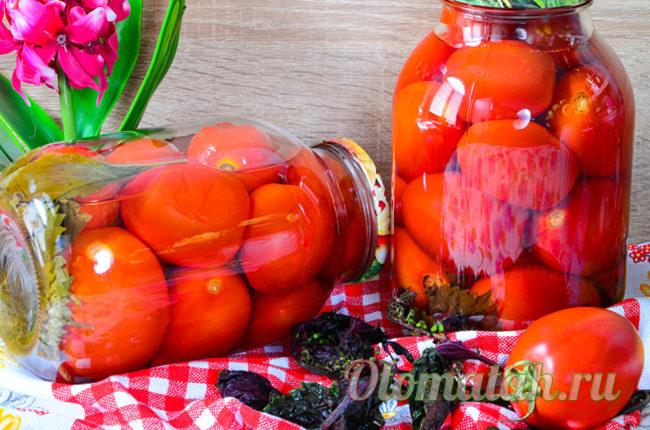 помидоры с базиликом