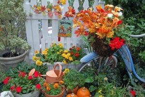 работы с цветами в октябре