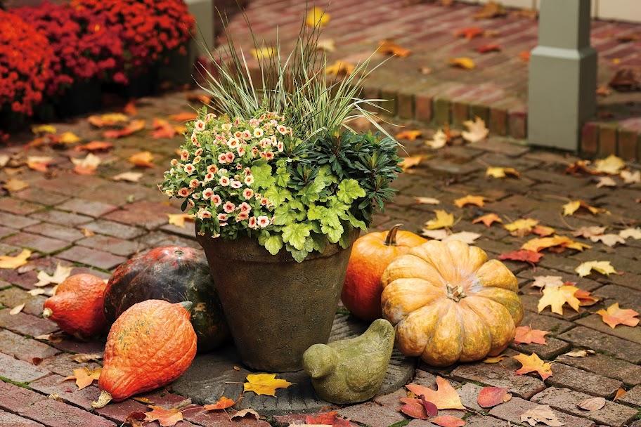 работы в саду в октябре