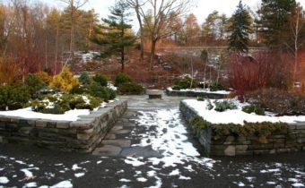 сад в феврале