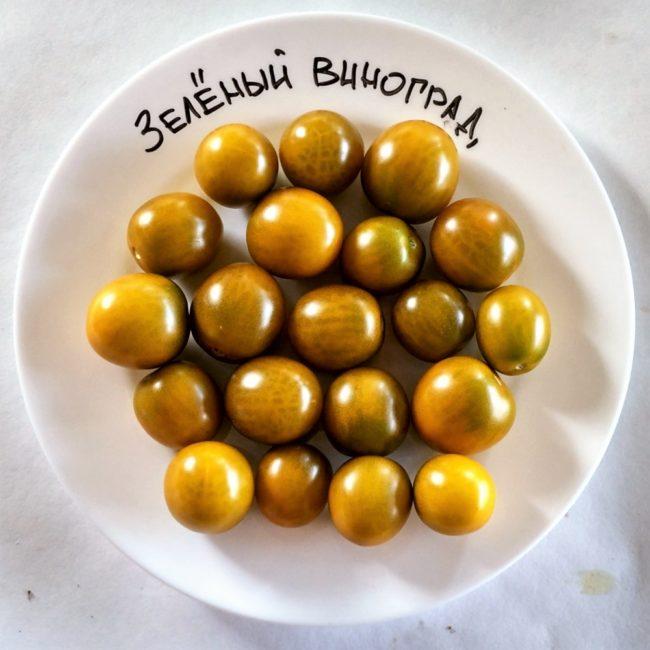 томат зеленый виноград