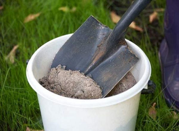 Как сажать лук, чтобы получить хороший урожай