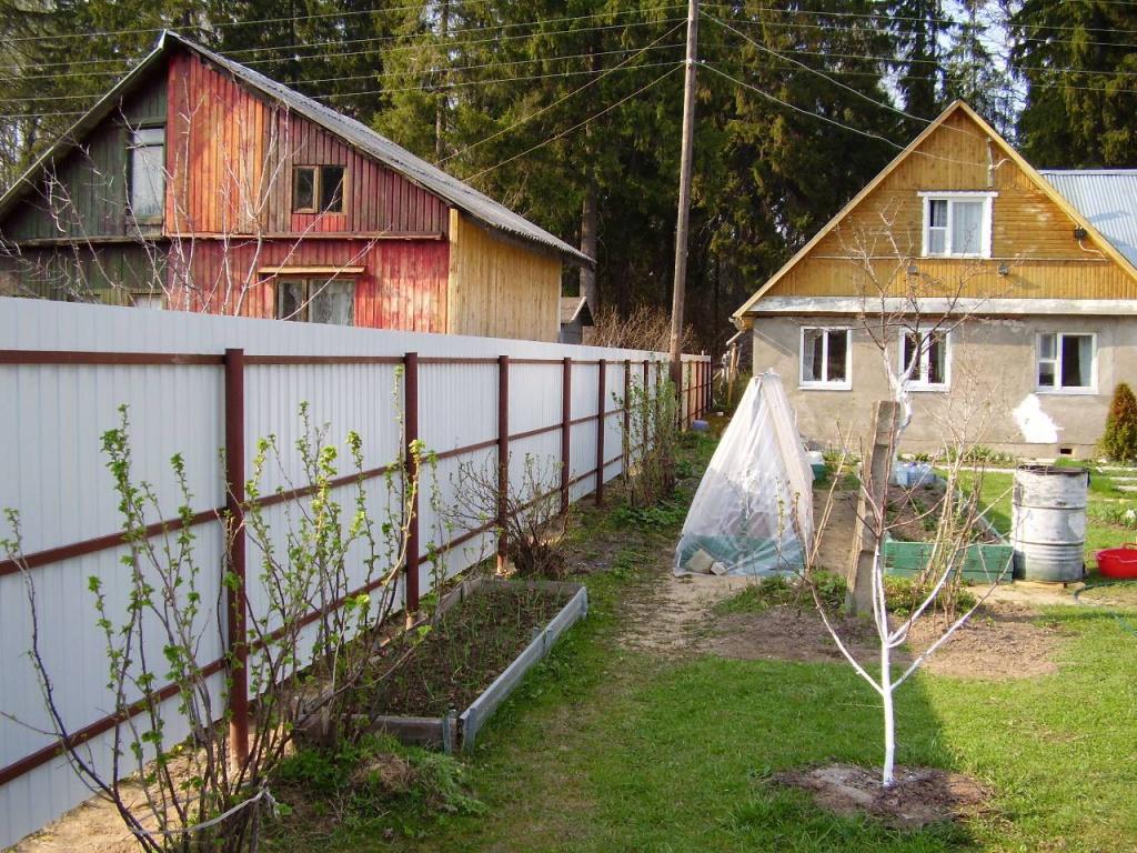 забор из профнастила между соседями
