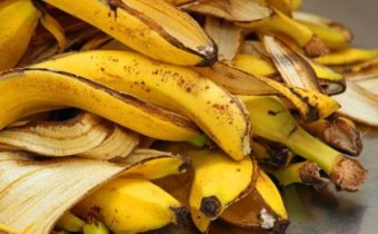 bananovaja kozhura
