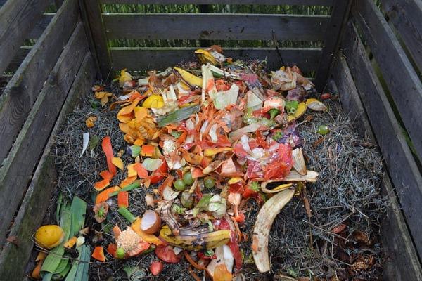 kompost iz othodov