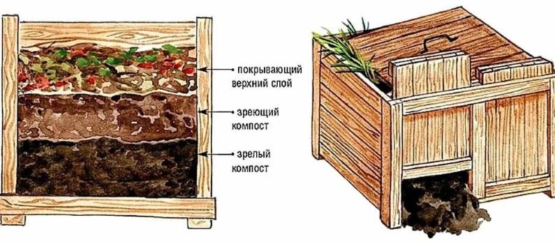 chto klast v kompost