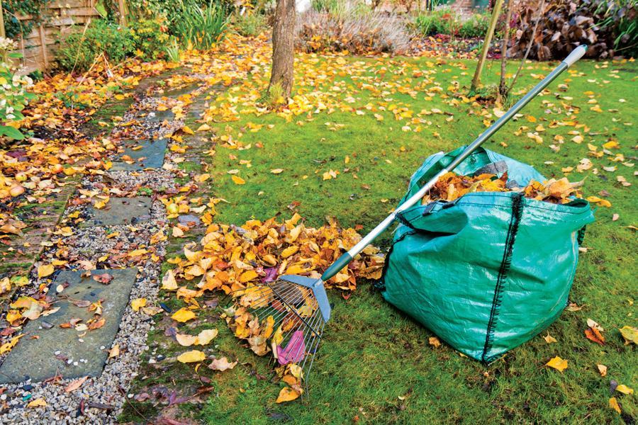 Как подготовить газон к зиме с осени
