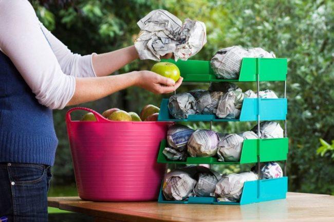 подготовка яблок к долгому хранению