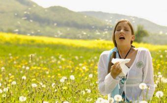 Календарь цветения для аллергиков 2020 в Москве: сроки начала цветения растений, продолжительность периода и профилактика аллергии