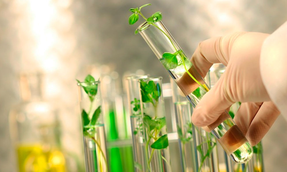Био препараты для растений