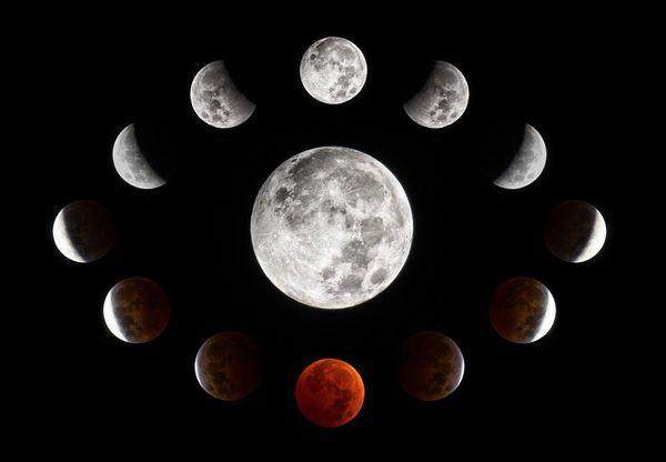 Когда сажать по лунному календарю