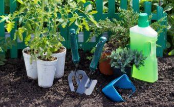 Что такое регуляторы роста растений