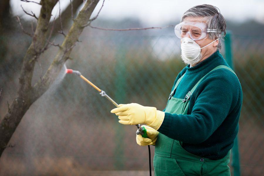 Как проводить обработку сада и не получить отравление