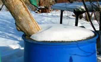 Обязательная подготовка ёмкостей на даче к зиме